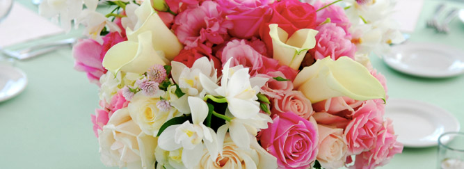 zieger & sons, Inc. Wholesale florists